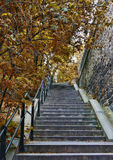 Stone ladder in park. In an environment of autumn trees Royalty Free Stock Photo