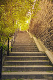 Stone ladder. In park in the spring Royalty Free Stock Photography