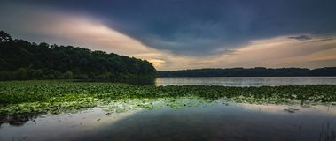Stone Lake Sunset Panorama. Dramatic sky after a rain storm over the beautiful green lily-pad covered Stone Lake on a summer evening, LaPorte, Indiana royalty free stock photography