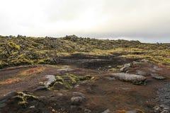 Stone landscape in Iceland Stock Photo