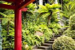 Stone Lantern in a Beautiful Garden at Monte above Funchal Madeira. This wonderful garden is at the top of the cablecar from the seafront in Funchal. It is Stock Photos