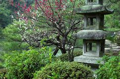 A stone lantern at a Japanese Garden in Kyoto, Japan.  Stock Photo