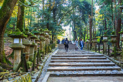Stone lanterns at Kasuga Taisha in Nara Stock Images