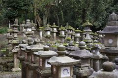 Stone lanterns at Kasuga Taisha shrine in Nara Royalty Free Stock Photography