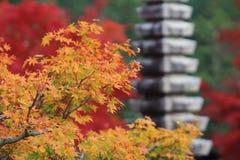 A Stone lanterns in kyoto Royalty Free Stock Photo