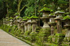 Stone lanterns in Nara Royalty Free Stock Image