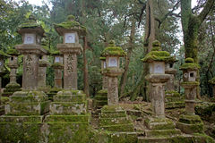 Stone lanterns, Nara, Japan Stock Image