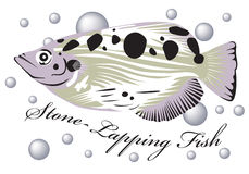 Stone lapping fish. Royalty Free Stock Photo