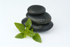 Stone with leafs. Black stones on top of eachother with a green leaf and white background Royalty Free Stock Photos
