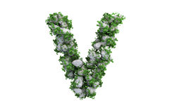 Stone letter V covered with ivy, isolated Royalty Free Stock Photo