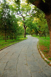 Stone Lined Path. A stone lined path through the Confucius family cemetery in the city of Qufu in Shandong Province of China stock photography