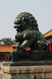 Stone lion. A stone lion in a Chinese royal garden Royalty Free Stock Image