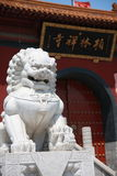 Stone lion. In China, Bailin temple ,a huge rock lion royalty free stock photo
