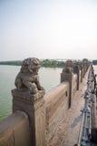 Stone lion Stock Image