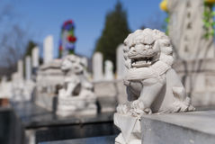 Stone lion in cemetery Royalty Free Stock Images