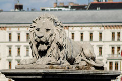 Stone lion Royalty Free Stock Image