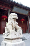 A stone lion in china Royalty Free Stock Photo