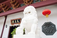 A stone lion in china Stock Photos