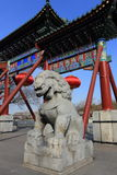 The  stone lion of china Stock Images