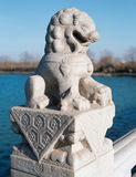 Stone lion of china Royalty Free Stock Photos