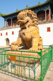 Stone lion in front of the Putuo Temple gat Royalty Free Stock Images