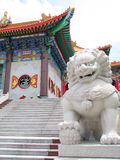 Stone Lion guarding the Temple Stock Images