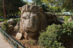 Stone lion monument in Ifrane is a cult landmark in mid Atlas, Morroco. Africa Royalty Free Stock Photos
