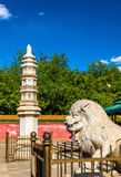 Stone lion and pagoda at the Four Great Regions Temple - Summer Palace, Beijing. China Stock Photos