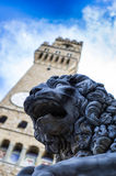 Stone lion by the palazzo vecchio Stock Photos