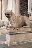 Stone lion of Parma Cathedral Duomo Royalty Free Stock Photography