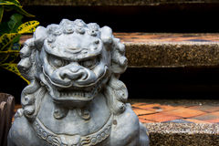 Stone Lion Stock Photography
