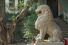 Stone lion sculpture Royalty Free Stock Images