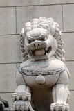 Stone lion sculpture. Royalty Free Stock Images