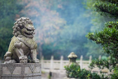 Stone lion sculpture Royalty Free Stock Image