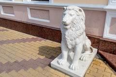 Stone lion sculpture Stock Photography