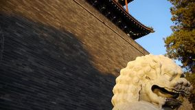 Stone lion stand in ancient wall of ancient Chinese architecture. stock footage