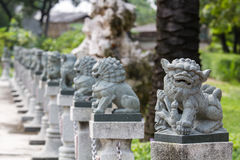 Stone lion statue. Line of Chinese stone lion statue in Chinese Temple Stock Photo