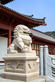 Stone lion statue in chinese temple Royalty Free Stock Images
