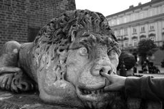 Stone lion statue with finger in the nose black and white photo stock image