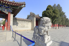 The stone lion statue in front of the great ciensi temple Stock Photos
