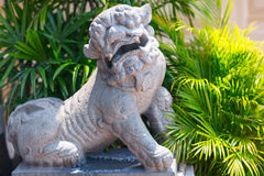 Stone lion statue. Wat Pho Temple in Bangkok Stock Images