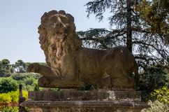 Stone lion statues on the gates of the Villa Doria-Pamphili in Rome, Italy. Stone lion statues on the gates of the Villa Doria-Pamphili in Rome royalty free stock images