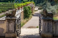 Stone lion statues on the gates of the Villa Doria-Pamphili in Rome, Italy. Stone lion statues on the gates of the Villa Doria-Pamphili in Rome royalty free stock photos