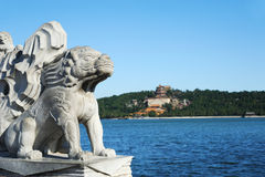 Stone lion in Summer palace Stock Photos