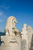 Stone lion. In Summer Palace, Beijing Royalty Free Stock Image