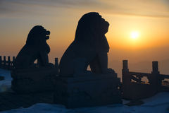 Stone lion and sunrise. The temple stone lions in the sunrise Stock Images
