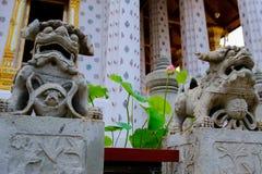 Stone lion Thai-Chinese sculpture in Wat Arun buddhist temple in Bangkok, Thailand. Stock Photos