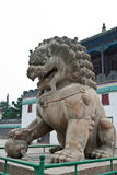 Stone lion works in the Chinese traditional garden Stock Image