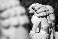 The stone lions. In an Chinese temple royalty free stock images