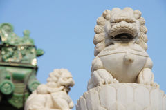 Free Stone Lions Royalty Free Stock Photography - 13322897